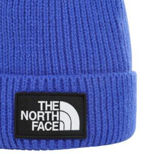 THE NORTH FACE BEAN BOX LOGO NF0A3FMVCZ6 BLU