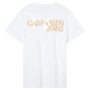 CALVIN KLEIN UOMO T SHIRT MONOGRAM CLEAR J30J317507 YAF WHITE