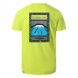 THE NORTH FACE T SHIRT NF00CEQ8JE31 SULPHR SPR